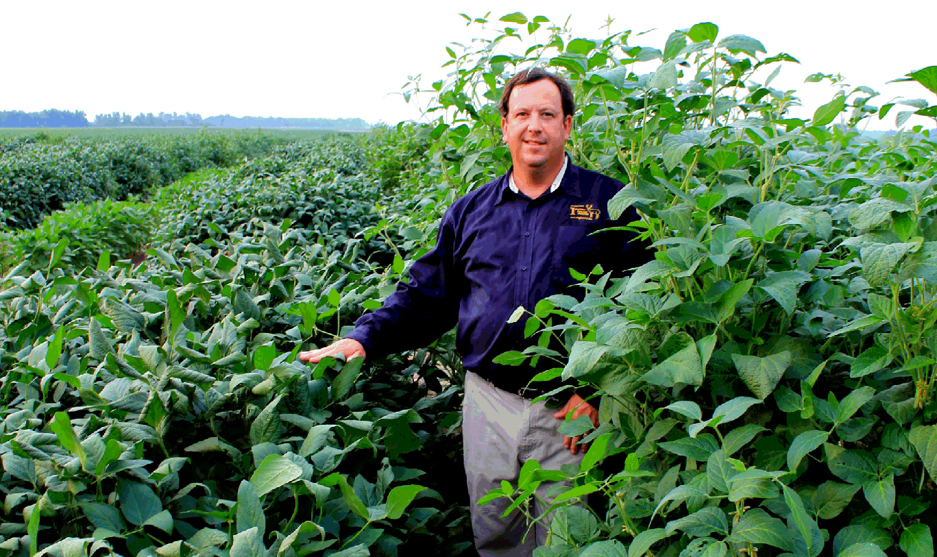 Eagle Seed, THE ORIGIN OF FORAGE  Soybeans -- best food plot